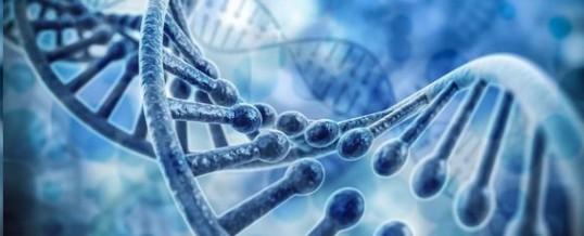 """El ADN viral """"basura"""", la dieta cetogénica que mejora el ADN y la fuerza cometaria"""
